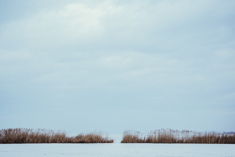 frozen-240